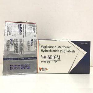 Voglibose0.2MG + METFORMIN 500MG SR TABLET